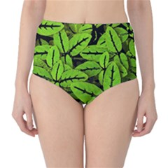 Nature Print Pattern High Waist Bikini Bottoms
