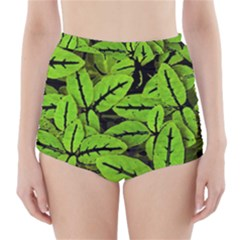 Nature Print Pattern High Waisted Bikini Bottoms