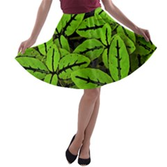Nature Print Pattern A Line Skater Skirt