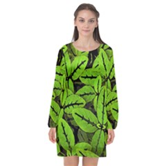Nature Print Pattern Long Sleeve Chiffon Shift Dress