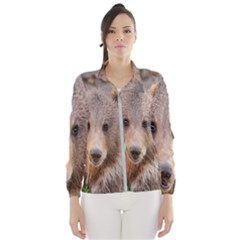 Baby Bear Animals Wind Breaker (women)