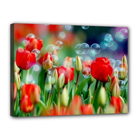 Colorful Flowers Canvas 16  X 12