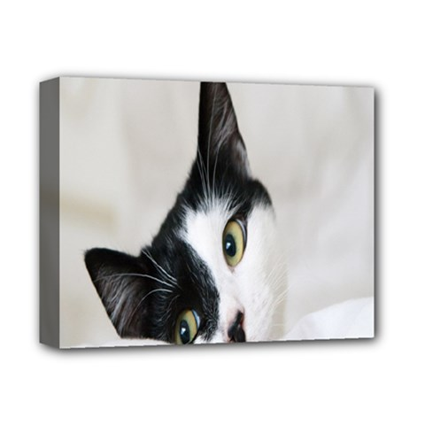 Cat Face Cute Black White Animals Deluxe Canvas 14  X 11