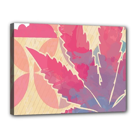 Marijuana Heart Cannabis Rainbow Pink Cloud Canvas 16  X 12