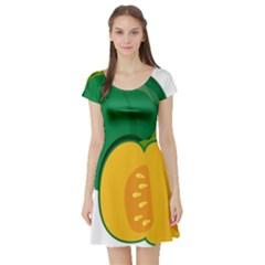 Pumpkin Peppers Green Yellow Short Sleeve Skater Dress