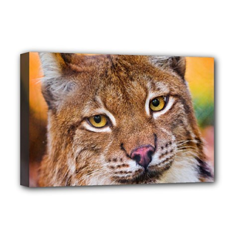 Tiger Beetle Lion Tiger Animals Deluxe Canvas 18  X 12