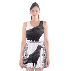 Vintage Halloween Raven Scoop Neck Skater Dress