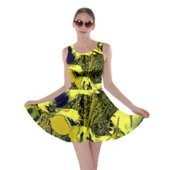 Amazing Glowing Flowers 2c Skater Dress