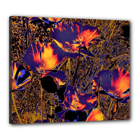 Amazing Glowing Flowers 2a Canvas 24  X 20