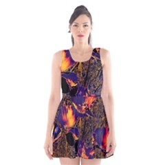 Amazing Glowing Flowers 2a Scoop Neck Skater Dress