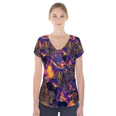 Amazing Glowing Flowers 2a Short Sleeve Front Detail Top