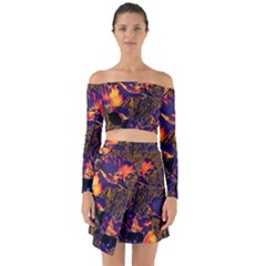 Amazing Glowing Flowers 2a Off Shoulder Top With Skirt Set