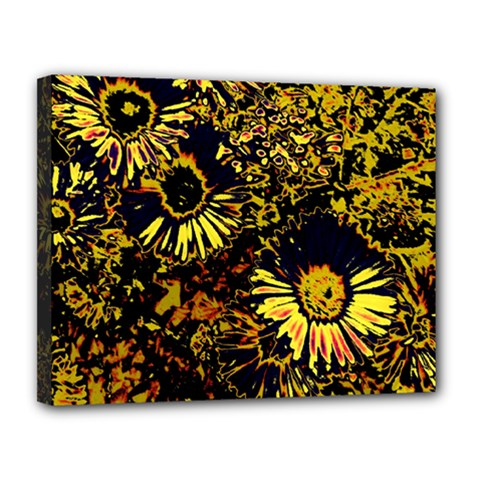 Amazing Neon Flowers B Canvas 14  X 11