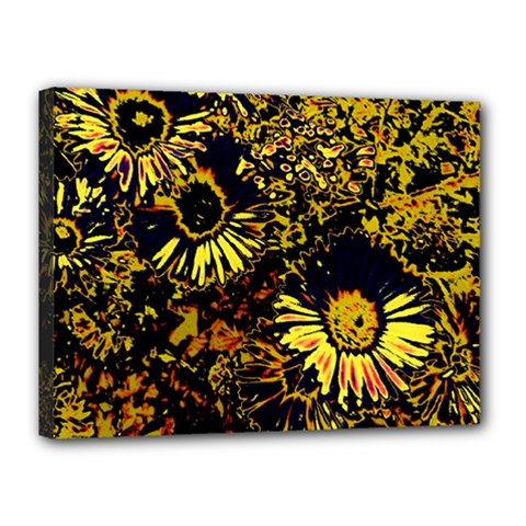 Amazing Neon Flowers B Canvas 16  X 12