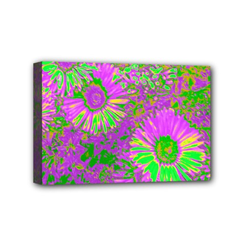 Amazing Neon Flowers A Mini Canvas 6  X 4