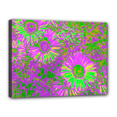 Amazing Neon Flowers A Canvas 16  X 12