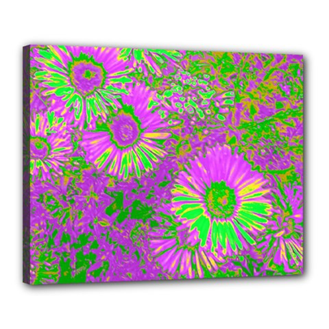 Amazing Neon Flowers A Canvas 20  X 16