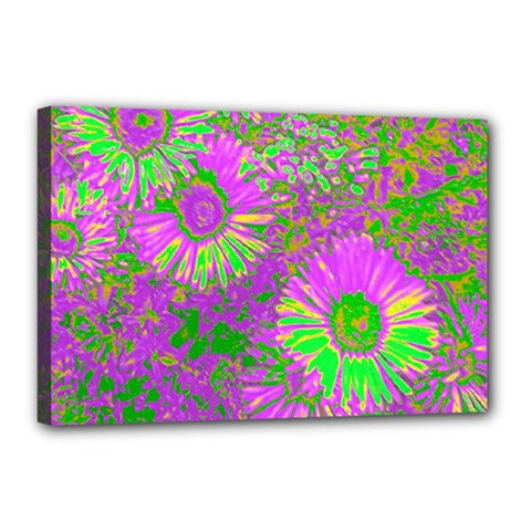 Amazing Neon Flowers A Canvas 18  X 12