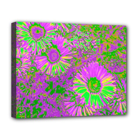 Amazing Neon Flowers A Deluxe Canvas 20  X 16