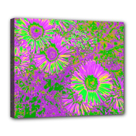 Amazing Neon Flowers A Deluxe Canvas 24  X 20