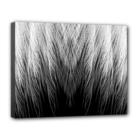 Feather Graphic Design Background Canvas 14  X 11