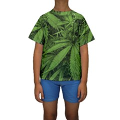 Marijuana Plants Pattern Kids  Short Sleeve Swimwear