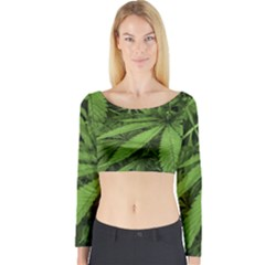 Marijuana Plants Pattern Long Sleeve Crop Top
