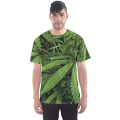 Marijuana Plants Pattern Men s Sports Mesh Tee
