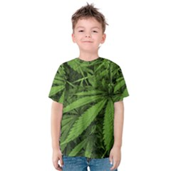 Marijuana Plants Pattern Kids  Cotton Tee