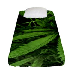 Marijuana Plants Pattern Fitted Sheet (single Size)