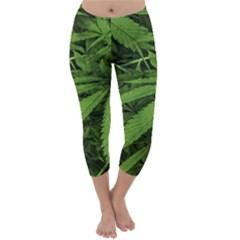 Marijuana Plants Pattern Capri Winter Leggings