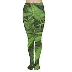 Marijuana Plants Pattern Women s Tights