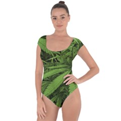 Marijuana Plants Pattern Short Sleeve Leotard