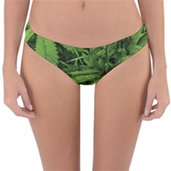 Marijuana Plants Pattern Reversible Hipster Bikini Bottoms