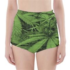 Marijuana Plants Pattern High Waisted Bikini Bottoms