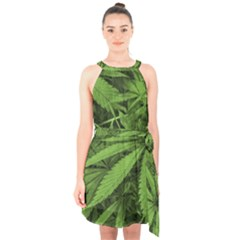 Marijuana Plants Pattern Halter Collar Waist Tie Chiffon Dress