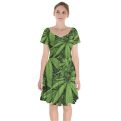 Marijuana Plants Pattern Short Sleeve Bardot Dress