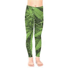 Marijuana Plants Pattern Kids  Legging