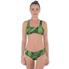 Marijuana Plants Pattern Criss Cross Bikini Set