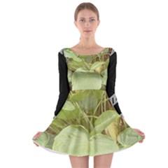 Img 20171006 235641 Img 20170911 101344 Long Sleeve Skater Dress