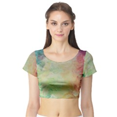 Painted Canvas                                 Short Sleeve Crop Top
