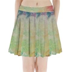 Painted Canvas                             Pleated Mini Mesh Skirt