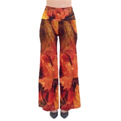 Ablaze With Beautiful Fractal Fall Colors Pants