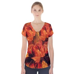 Ablaze With Beautiful Fractal Fall Colors Short Sleeve Front Detail Top