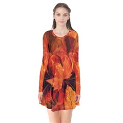 Ablaze With Beautiful Fractal Fall Colors Flare Dress