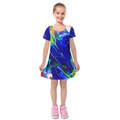 Abstract Acryl Art Kids  Short Sleeve Velvet Dress