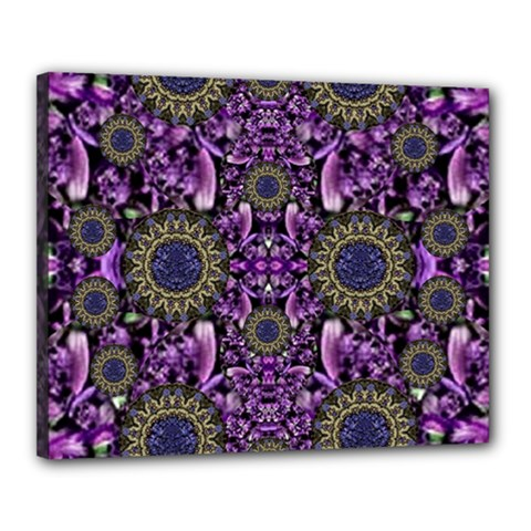 Flowers From Paradise In Fantasy Elegante Canvas 20  X 16