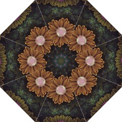 Abloom In Autumn Leaves With Faded Fractal Flowers Folding Umbrellas