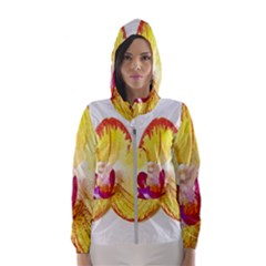 Phalaenopsis Yellow Flower, Floral Oil Painting Art Hooded Wind Breaker (women)