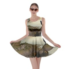 The Lonely Wolf On The Flying Rock Skater Dress